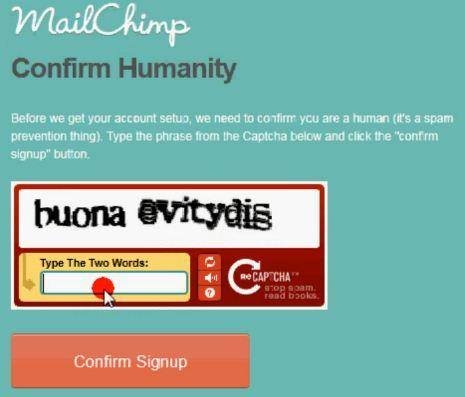 MailChimp reCAPTCHA Confirmation Page