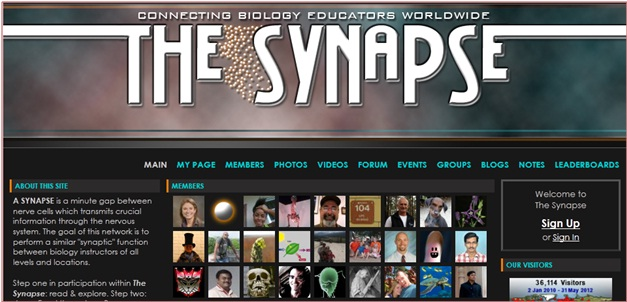 The Synapse Social Network